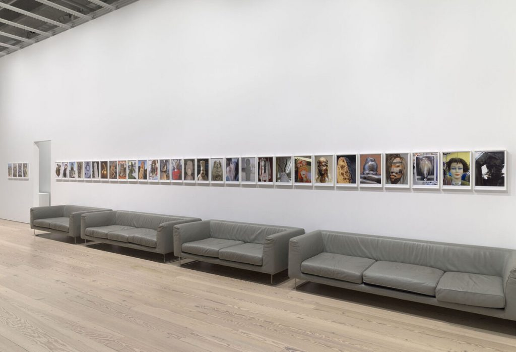 Installation view of Rachel Harrison Life Hack (Whitney Museum of American Art, New York, October 25, 2019–January 12, 2020). Voyage of the Beagle, 2007. Photograph by Ron Amstutz