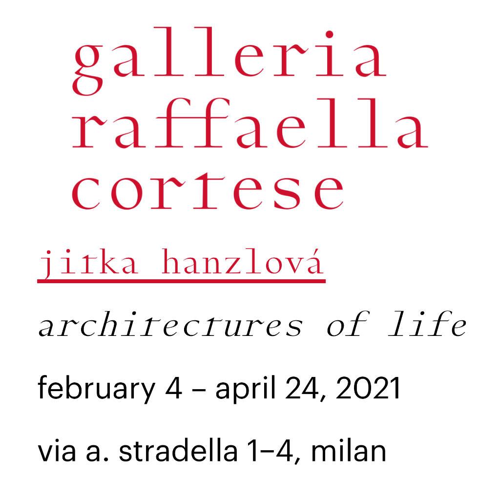 JITKA HANZLOVÁ: architectures of life