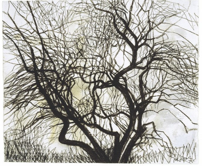 Old Apple Tree in Winter 1977 HMF 77(28) watercolour, charcoal photo: Michel Muller
