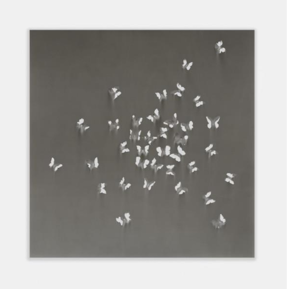 Claudio Parmiggiani, Untitled, 2021. Smoke and soot on board, 150 x 150 cm (59 1/8 x 59 1/8 in.) Courtesy the artist and Simon Lee Gallery